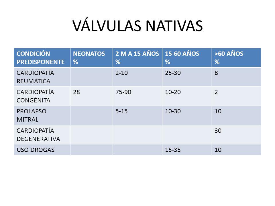 VÁLVULAS NATIVAS CONDICIÓN PREDISPONENTE NEONATOS % 2 M A 15 AÑOS