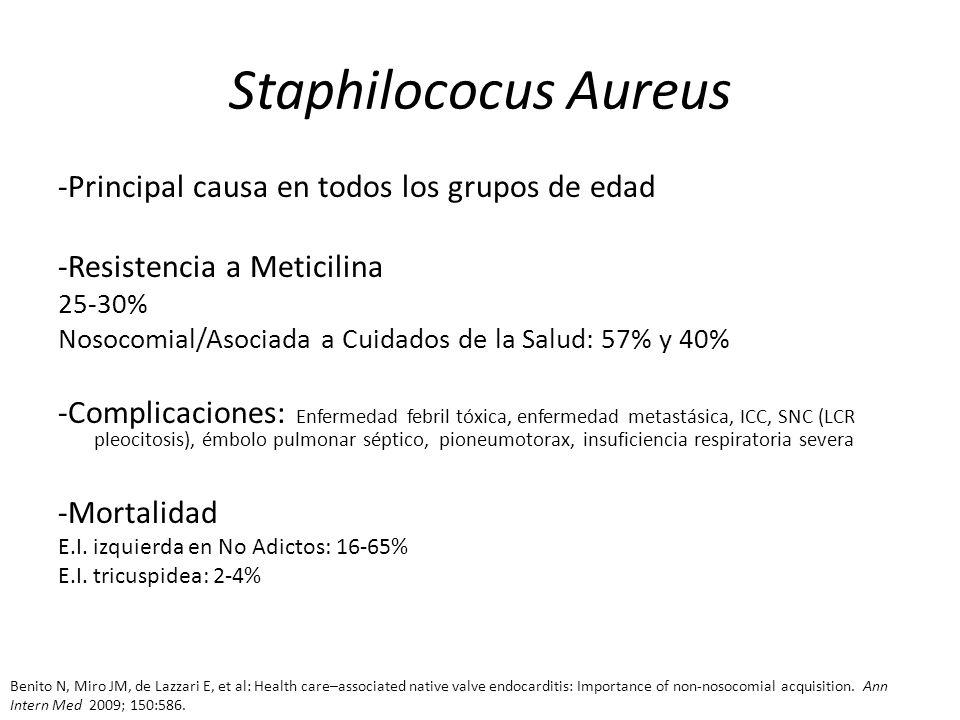 Staphilococus Aureus -Principal causa en todos los grupos de edad