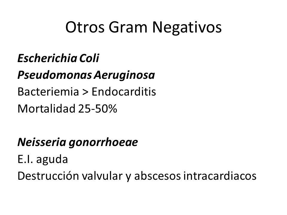 Otros Gram Negativos