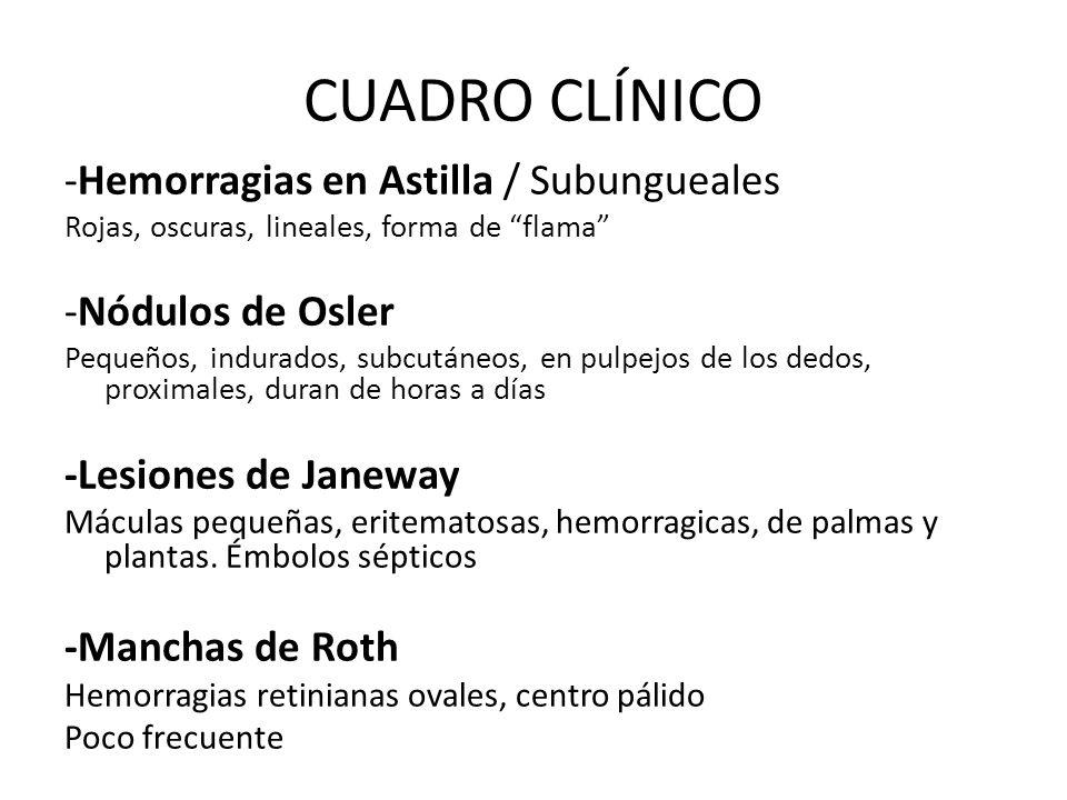 CUADRO CLÍNICO -Hemorragias en Astilla / Subungueales