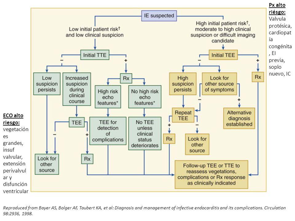 Valvula protésica, cardiopatía congénita, EI previa, soplo nuevo, IC