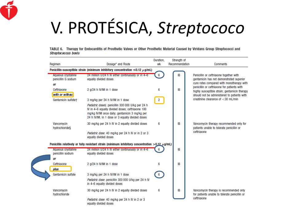V. PROTÉSICA, Streptococo