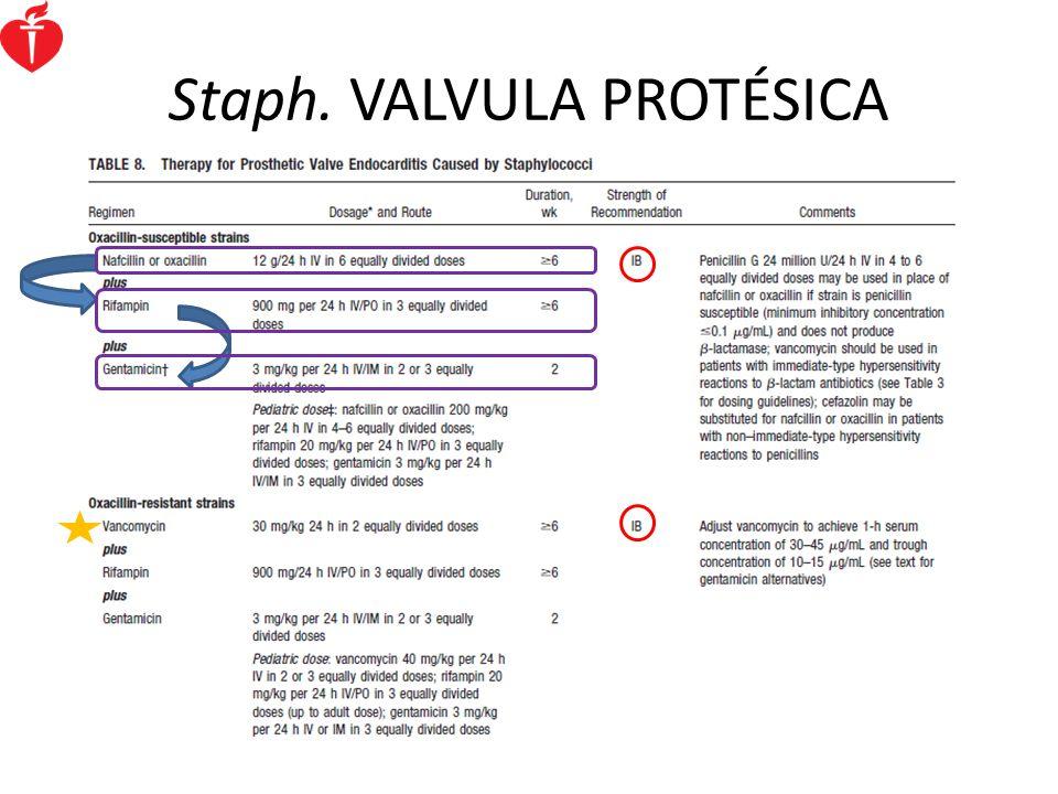 Staph. VALVULA PROTÉSICA