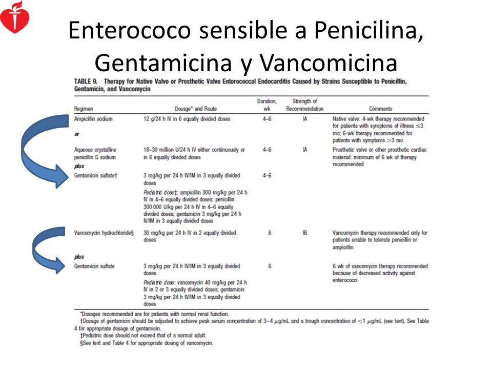 Enterococo sensible a Penicilina, Gentamicina y Vancomicina