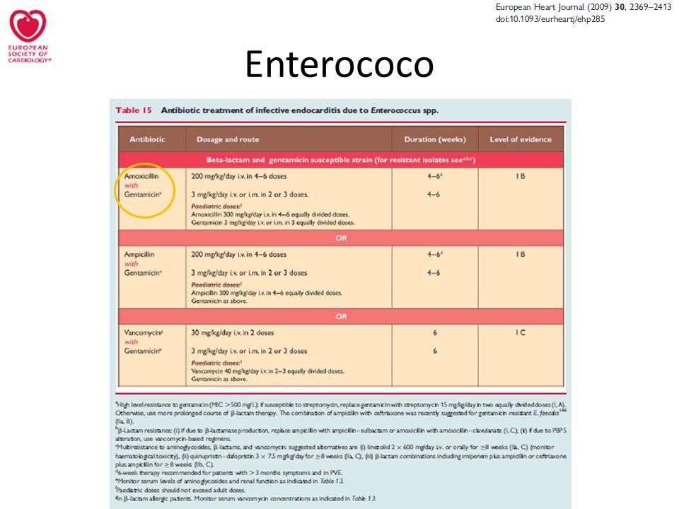 Enterococo
