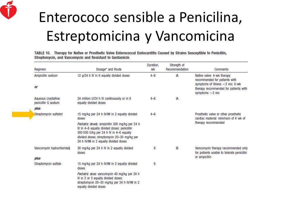 Enterococo sensible a Penicilina, Estreptomicina y Vancomicina