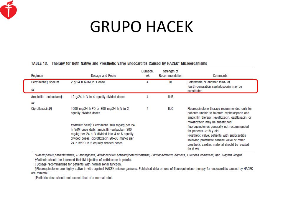 GRUPO HACEK