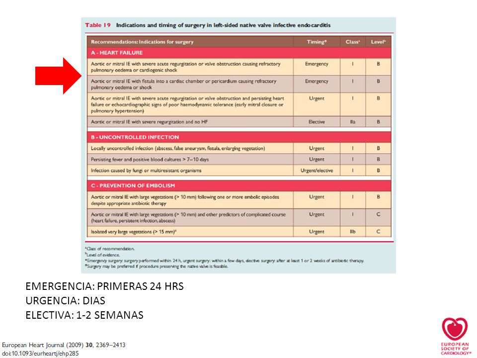 EMERGENCIA: PRIMERAS 24 HRS