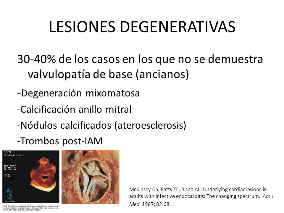 LESIONES DEGENERATIVAS