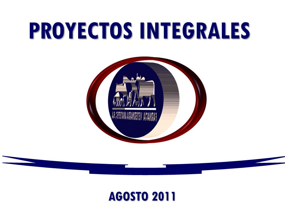 PROYECTOS INTEGRALES AGOSTO 2011