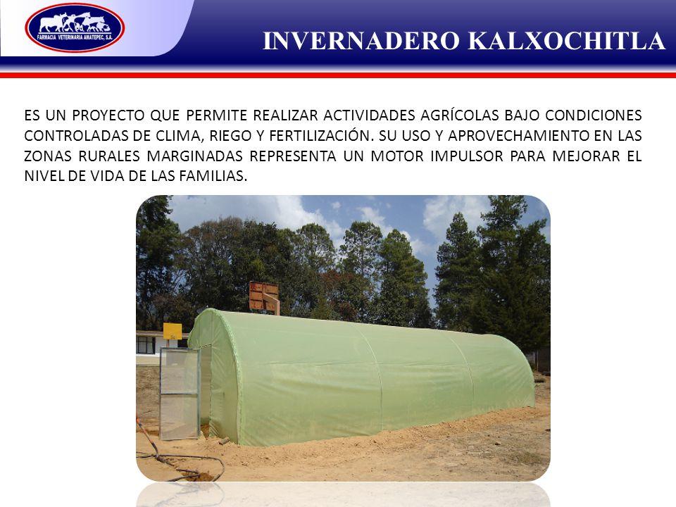 INVERNADERO KALXOCHITLA