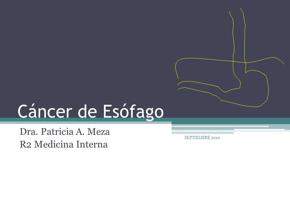 Dra. Patricia A. Meza R2 Medicina Interna