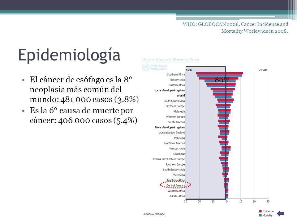 WHO: GLOBOCAN 2008. Cancer Incidence and Mortality Worldwide in 2008.