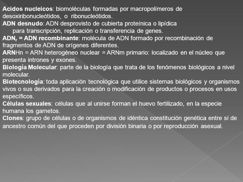 Acidos nucleicos: biomoléculas formadas por macropolímeros de desoxiribonucleótidos, o ribonucleótidos.