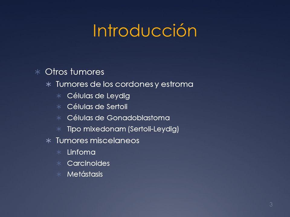 Introducción Otros tumores Tumores de los cordones y estroma