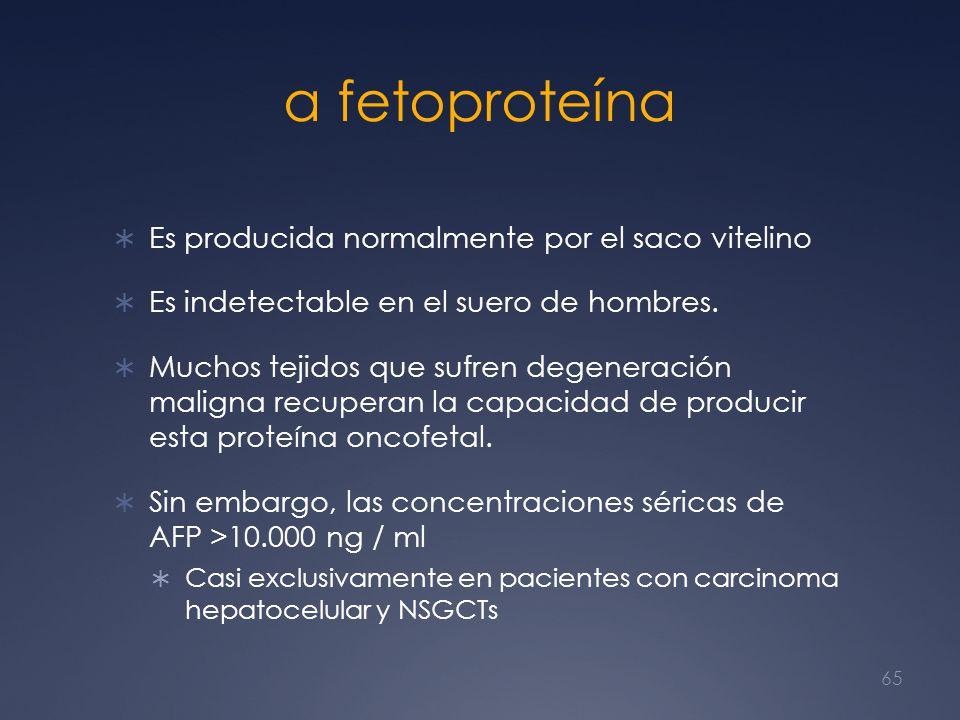 α fetoproteína Es producida normalmente por el saco vitelino