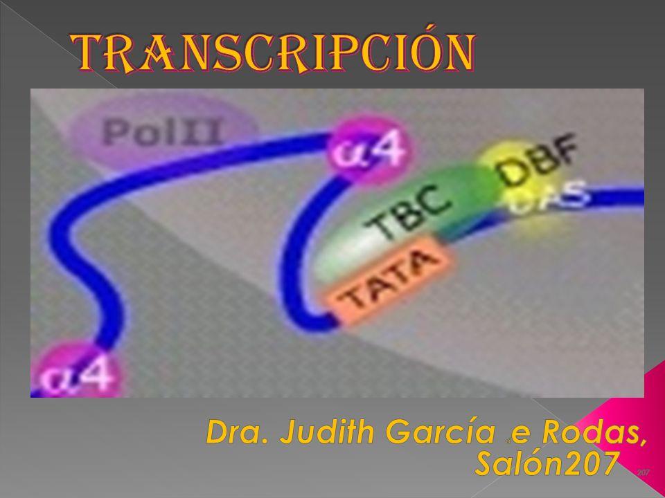 Dra. Judith García de Rodas, Salón207 207