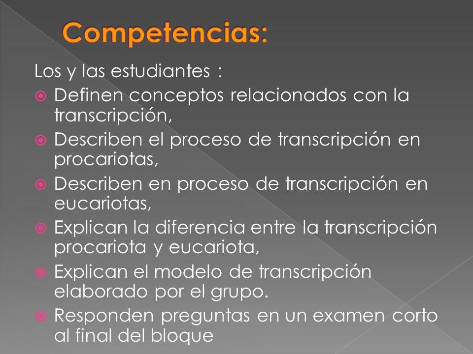 Competencias: Los y las estudiantes :