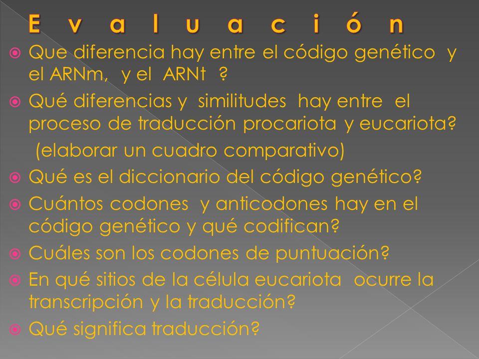 Evaluación Que diferencia hay entre el código genético y el ARNm, y el ARNt