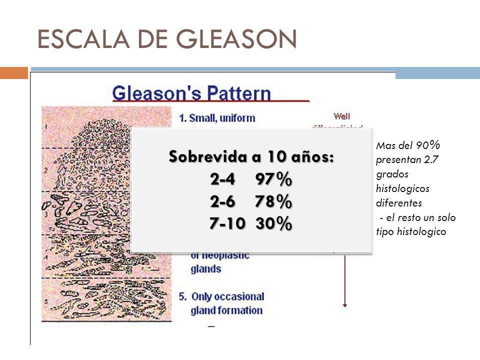 ESCALA DE GLEASON Sobrevida a 10 años: 2-4 97% 2-6 78% 7-10 30%