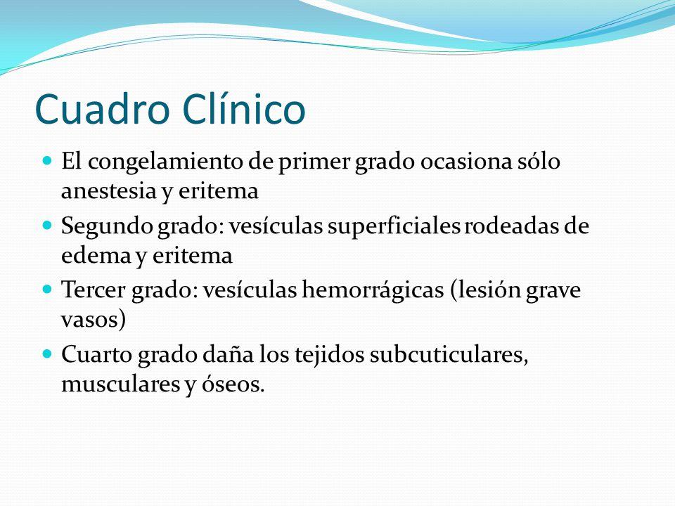 Cuadro Clínico El congelamiento de primer grado ocasiona sólo anestesia y eritema.
