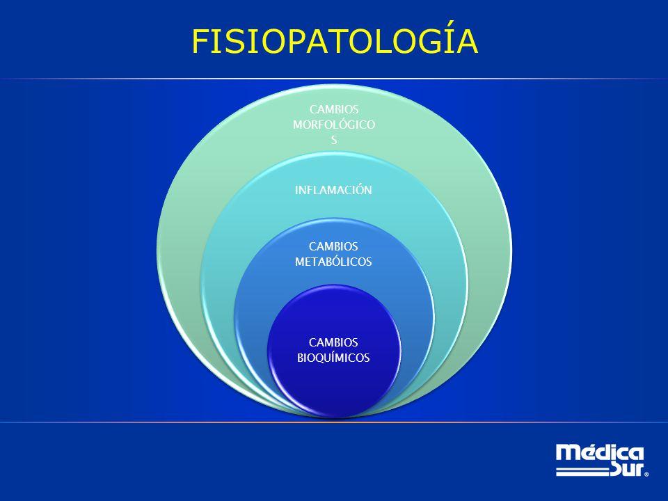 FISIOPATOLOGÍA CAMBIOS MORFOLÓGICOS INFLAMACIÓN CAMBIOS METABÓLICOS