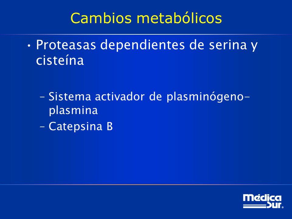 Cambios metabólicos Proteasas dependientes de serina y cisteína