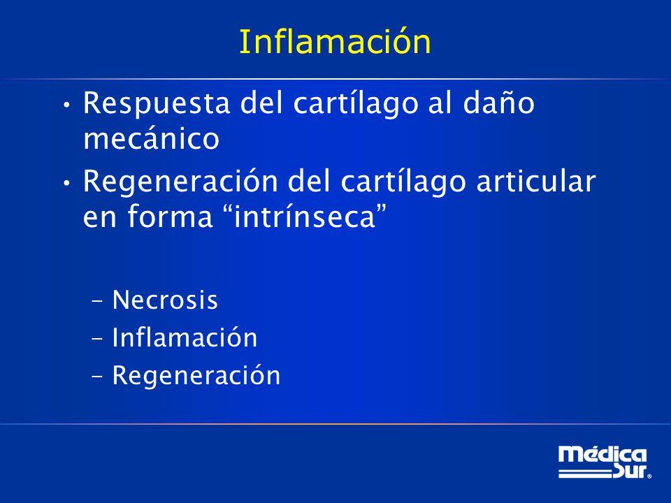 Inflamación Respuesta del cartílago al daño mecánico