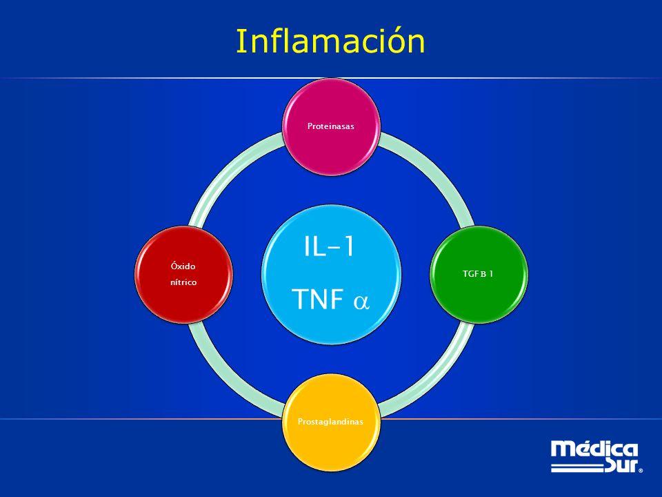 Inflamación IL-1 TNF a Proteinasas Óxido TGF B 1 nítrico