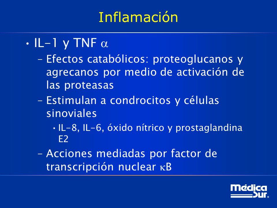 Inflamación IL-1 y TNF a. Efectos catabólicos: proteoglucanos y agrecanos por medio de activación de las proteasas.