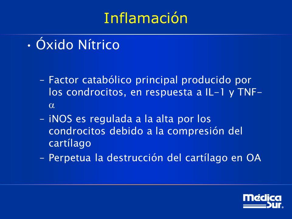 Inflamación Óxido Nítrico