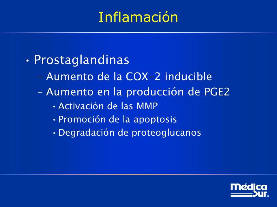 Inflamación Prostaglandinas Aumento de la COX-2 inducible