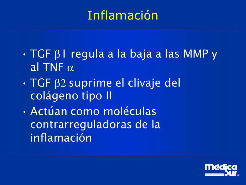 Inflamación TGF b1 regula a la baja a las MMP y al TNF a