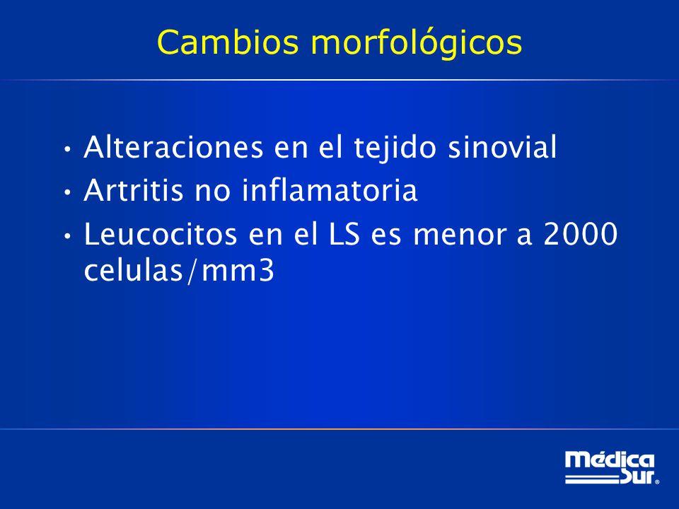 Cambios morfológicos Alteraciones en el tejido sinovial