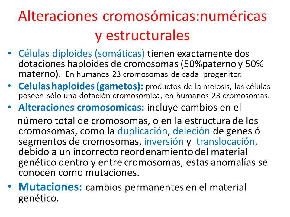 Alteraciones cromosómicas:numéricas y estructurales