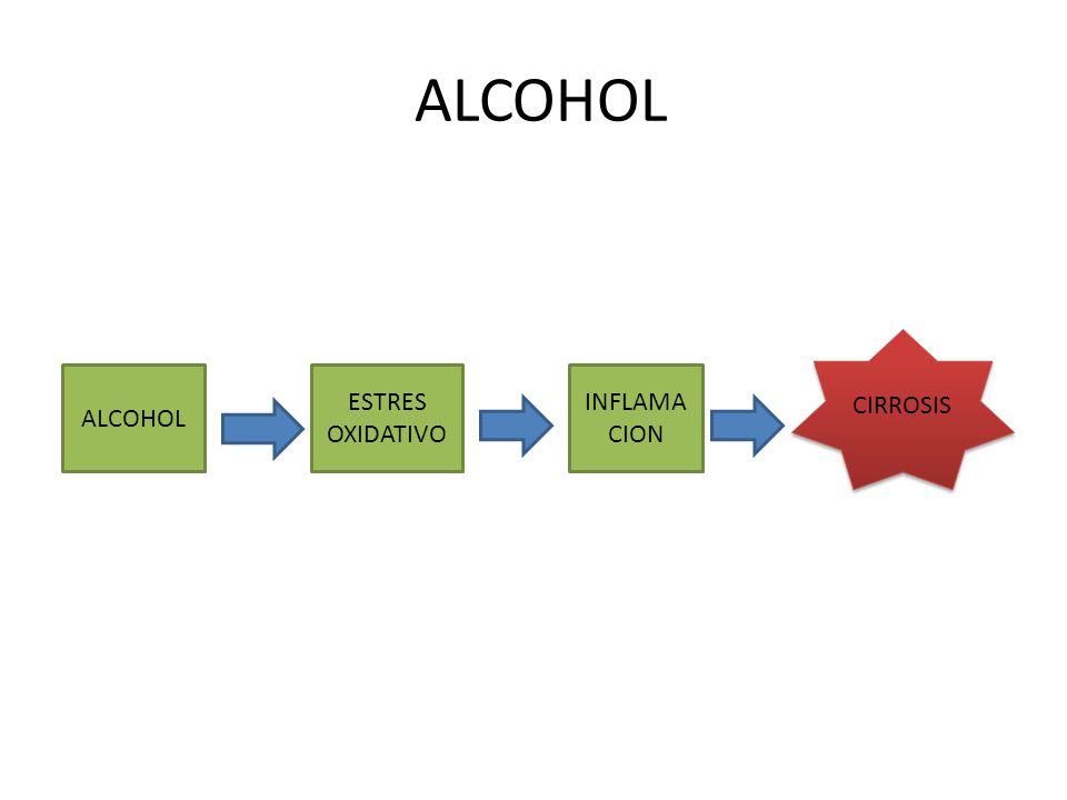 ALCOHOL CIRROSIS ALCOHOL ESTRES OXIDATIVO INFLAMACION
