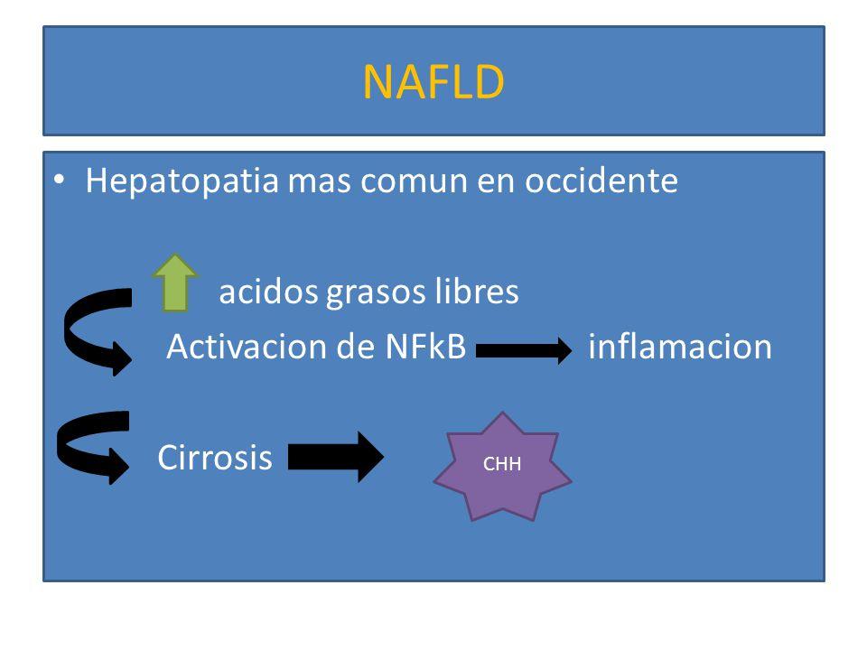 NAFLD Hepatopatia mas comun en occidente acidos grasos libres