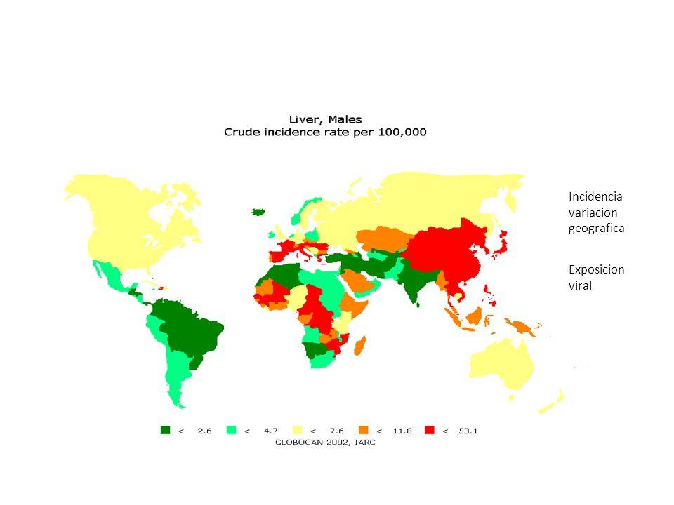 Incidencia variacion geografica