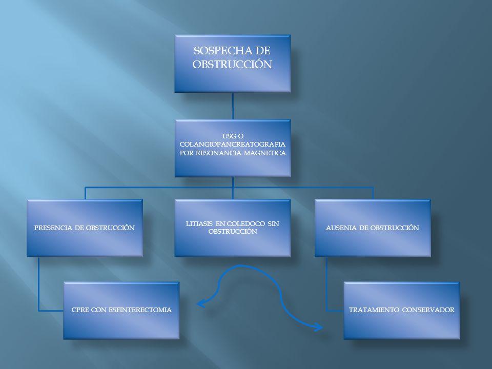 SOSPECHA DE OBSTRUCCIÓN