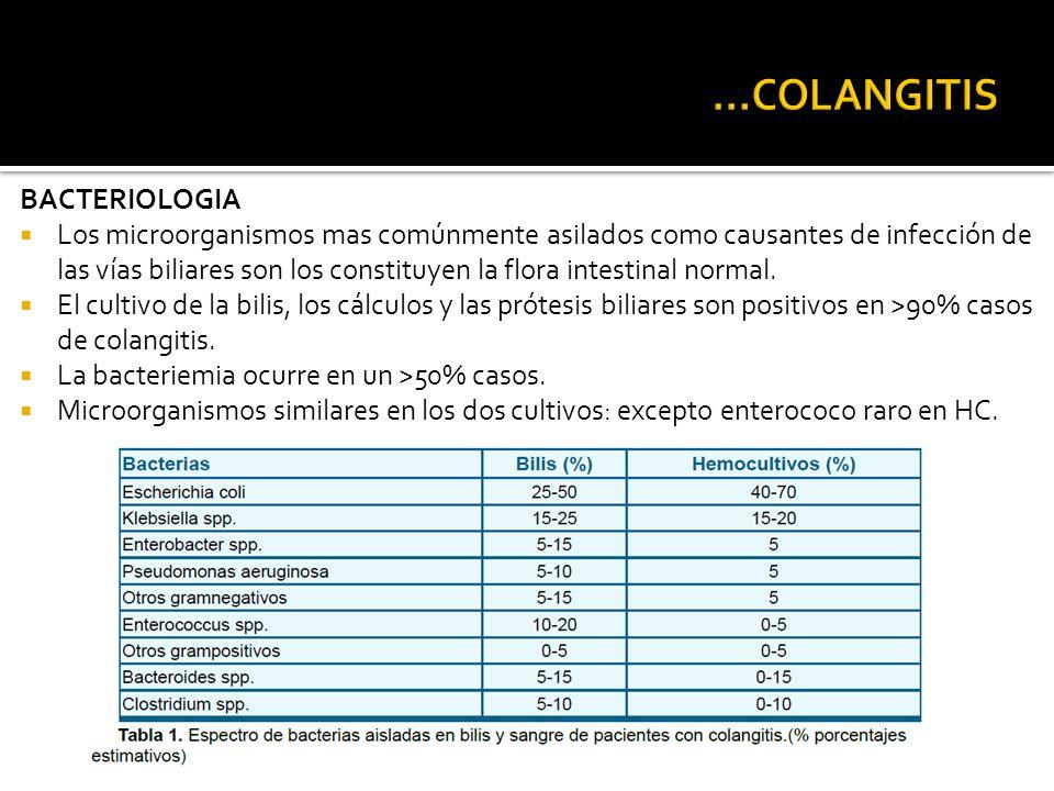 ...COLANGITIS BACTERIOLOGIA