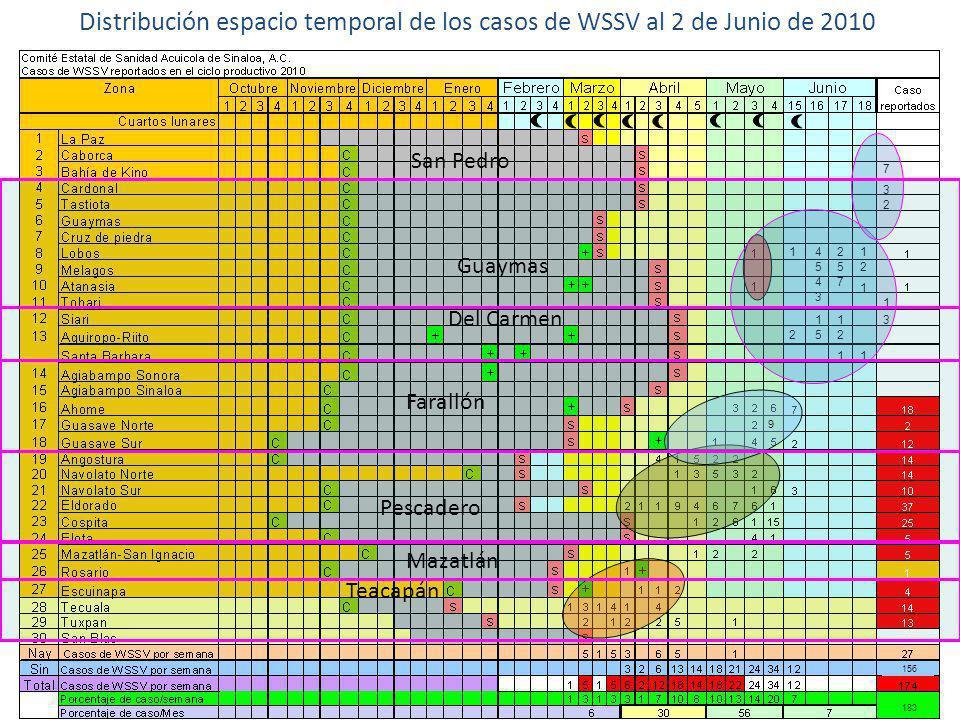 Distribución espacio temporal de los casos de WSSV al 2 de Junio de 2010