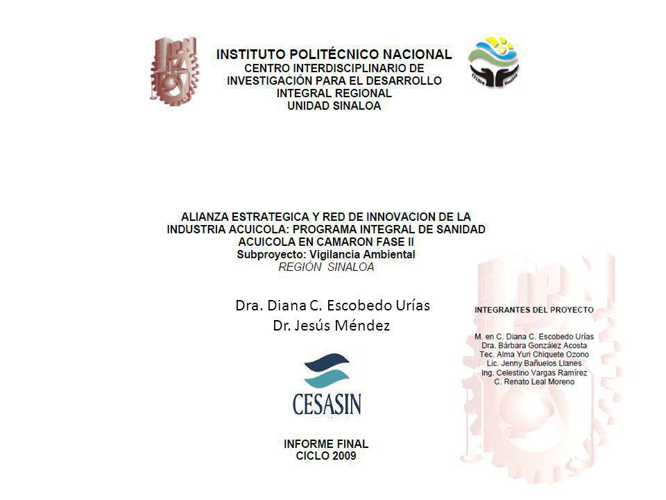 Dra. Diana C. Escobedo Urías