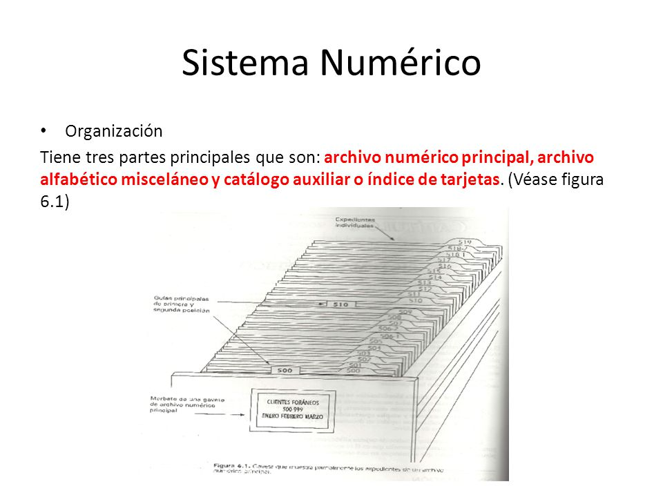 Sistema Numérico Organización