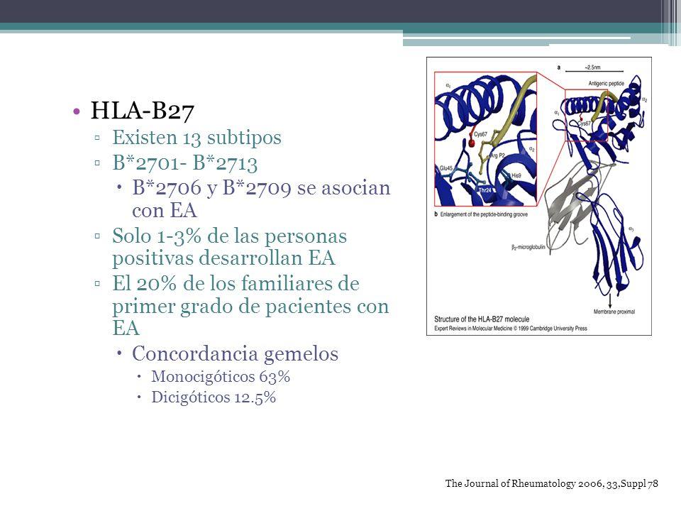 HLA-B27 B*2701- B*2713 B*2706 y B*2709 se asocian con EA