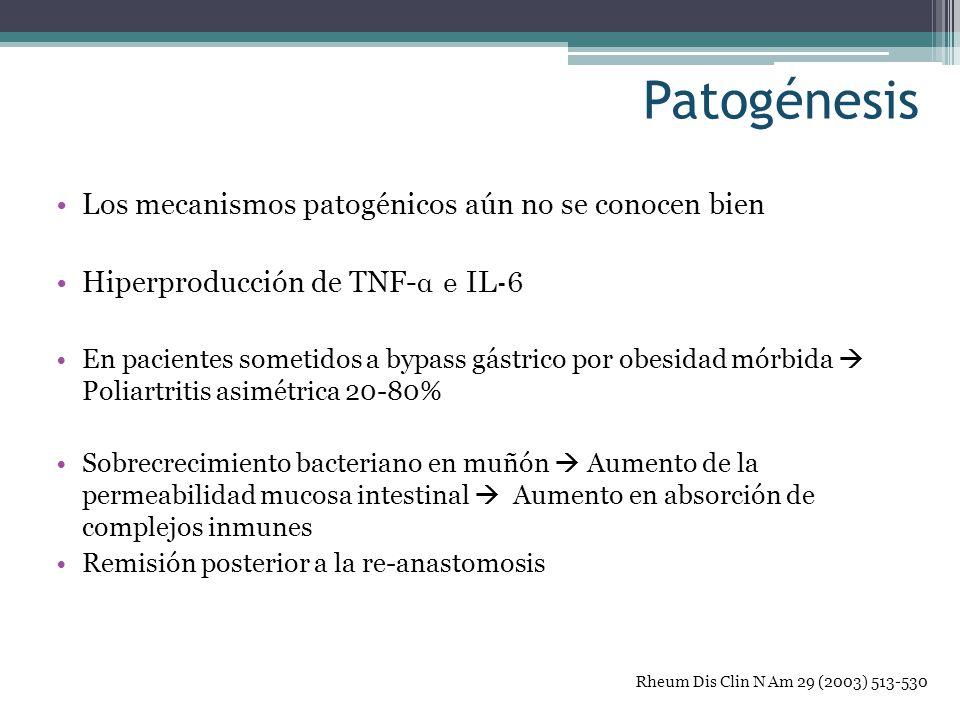 Patogénesis Los mecanismos patogénicos aún no se conocen bien