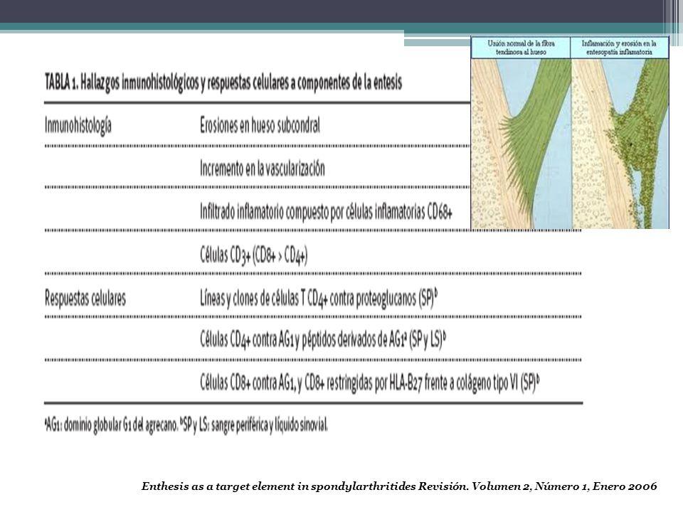 Colageno I: PIEL , II: CARTILAGO, III VASOS SANGUINEOS, VI ASOCIADO AL TIPO I