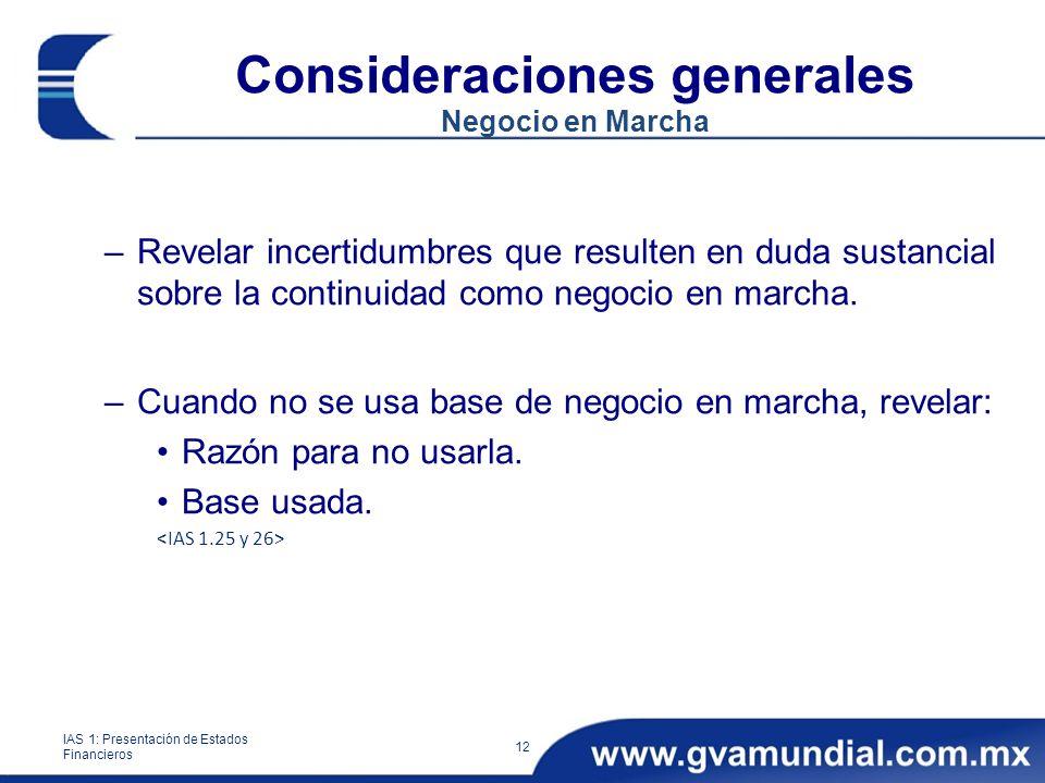 Consideraciones generales Negocio en Marcha