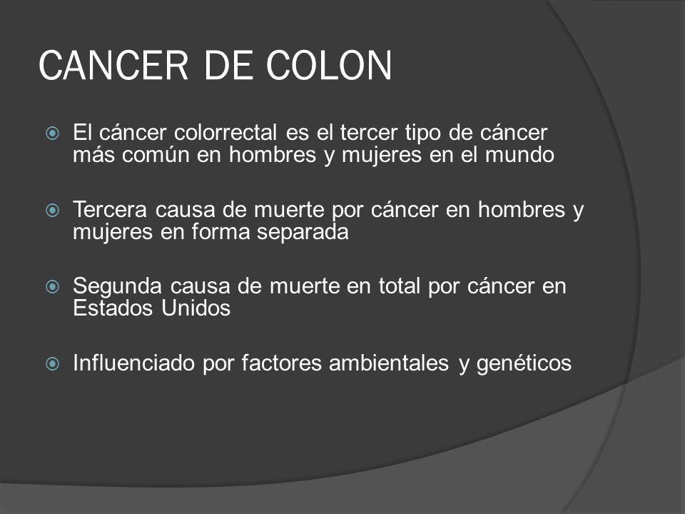 CANCER DE COLON El cáncer colorrectal es el tercer tipo de cáncer más común en hombres y mujeres en el mundo.