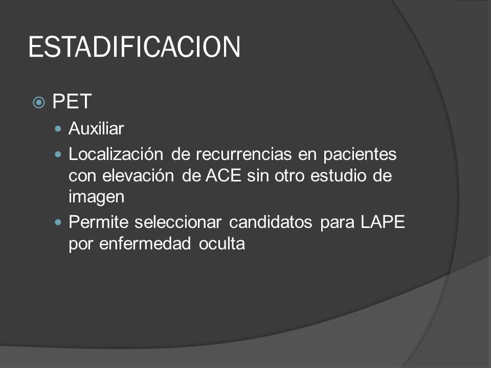 ESTADIFICACION PET Auxiliar