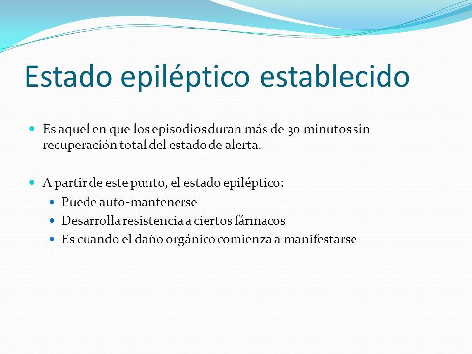 Estado epiléptico establecido
